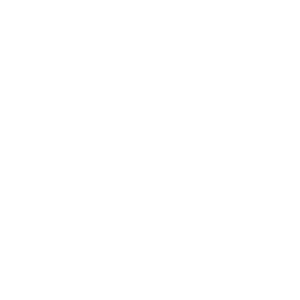 Hand Holding Heart Icon